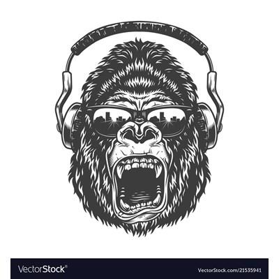 Jungle Room Radio