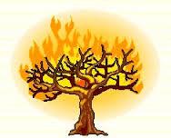 Holy Spirit and Fire Radio