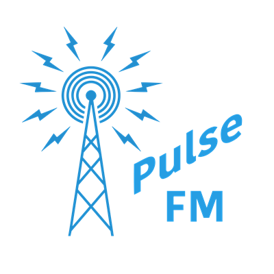 Pulse FM Kingborough and Huon (US Server)