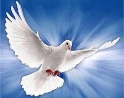 Unción Celestial