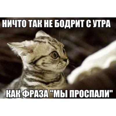 aaaaaaaa1hp