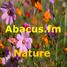 Abacus.fm - Nature