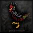 SALSA GALLO RADIO