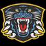 Nottingham Panthers Live