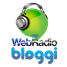 Bloggi Webradio