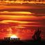 Radio Sunrise 202