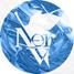 NERVsoft.net