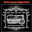 Black Swamp Digital Radio