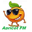 1065 Dance FM