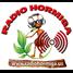 Radio Hormiga.US