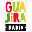 gonzo radio esteiyon