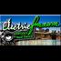 ElectricFM.com - America's Real Dance!