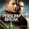 Prison Break Season 3 & 4 [Série TV]