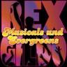 Rex Gildo Singt Musicals Und Evergreens