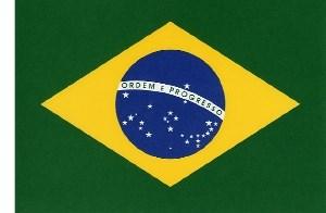 Eu Nasci No Brasil (Primal View Remix)