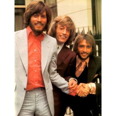 Bee Gees   Barbra Streisand  Barry Gibb   What Kind Of Foolmpg