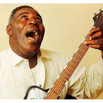 HOWLIN WOLF - SITTING AT THE TOP OF THE WORLD