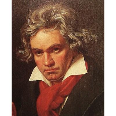 String Quartet No. 17 B in Flat Major Grosse Fugue - Great Fugue, Op. 133: V. Allegro molto e con brio - Allegro - Meno mosso e moderato