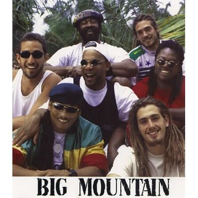 Big Mountain / Baby , I Love Your Way